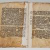 Folios 11v-12r: Genesis 6:20-7:21
