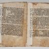 Folios 13v-14r: Genesis 7:21-8:20
