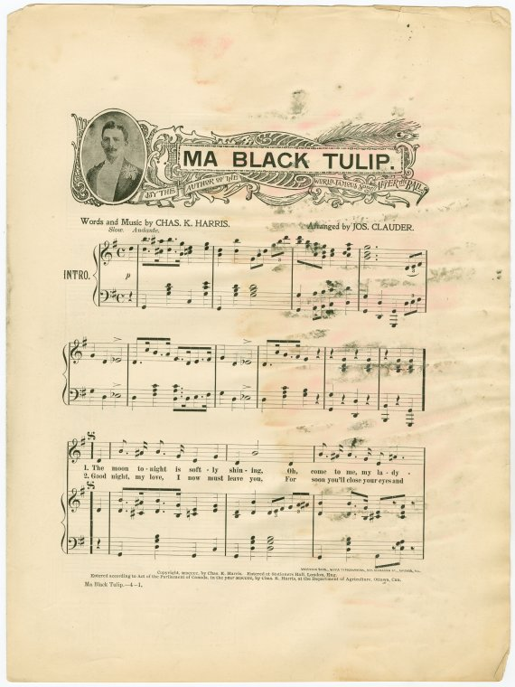 Ma black tulip / words and music by Chas. K. Harris.