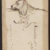 Original pencil sketch of Elizabeth Barrett Browning's dog, Flush.