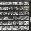 Christopher Street Liberation Day, 1970, contact sheet 8