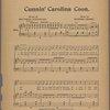 Cunnin' Carolina coon