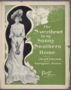 The sweetheart in my sunny southern home / words by Edward Ackerman ; music by Harrington L. Brannan.