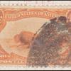 4c orange Indian Hunting Buffalo single