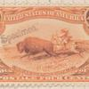 4c orange Indian Hunting Buffalo single