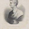 C.C. Sallust