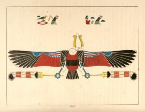 Le vautour, emblème vivant de Néith.