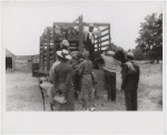 Florida migrants getting aboard the truck which will take them from Belcross, NC to another job in Onley, VA, July 1940.