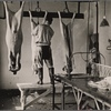 View in slaughter house in the meat section at the experimental farm of the United States Department of Agriculture. Beltsville, Maryland.
