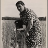 Hightstown, New Jersey. Jewish-American farm mother, Mrs. Cohen, wife of the farm manager.]
