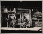 Vicksburg Negroes and sho