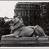Stephen A. Schwarzman Building, exterior, Patience the lion