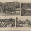 Regular Rough Riders at the front. From photographs by J.C. Hemment.--(See page 114). General Shafter and his staff, on their way to the front, stop to water their horses