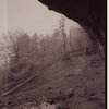 3-part panorama, Indian Ladder Trail, John Boyd Thacher State Park, Voorheesville, New York