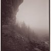 2-part panorama, Indian Ladder Trail, John Boyd Thacher State Park, Voorheesville, New York
