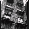 [Tenement fire escapes blocked by planters and buckets: Bronx?]