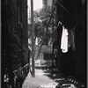 Alley view with Tenement House Dept inspector