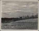 Land erosion at Crabtree Creek, Recreational Demonstration Area, near Raleigh, North Carolina.