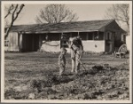 El Monte Federal Subsistence Homesteads. 100 homes, all occupied. Each with nearly an acre of ground. Average family income $800 year. Calif. 1936