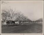 El Monte Federal Subsistence Homesteads. Calif. 1936