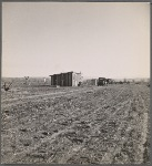 Bosque Farms Project. Resettled families temporary home. Each settler is alotted a plot of 40 acres