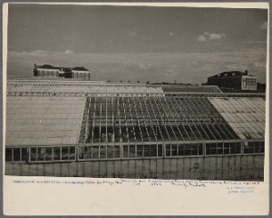 View of one of the greenhouses at the experimental farm of the Department of Agriculture at Beltsville, Maryland.