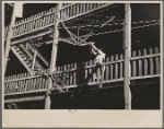 Woman hanging laundry from tenement porch. Manchester, New Hampshire