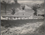 Laying house at the section of poultry at the experimental farm of the U.S.D.A. Prince Georges County. Beltsville, Maryland.