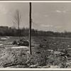 Lake site. Berwyn, Maryland.