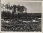 Lake site. Berwyn, [Greenbelt,] Maryland.
