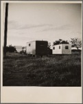 Migrants camped. So. Calif. 1936