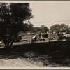 Migrant camp on the outskirts of Sacramento on the American River. Approximately 30 families lived in this camp in November 1936