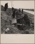 Digging a ditch. Greenhills, Ohio