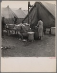 Disposal of garbage and dirty dishes. Tent City, near Shawneetown, Illinois