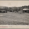 Farm on submarginal land optioned for wild life area. Pennsylvania.