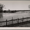 Submerged farmland near Tiptonville, Tennessee (?), during the 1937 flood.