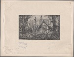 [Henry M. Stanley and members of his expedition traversing a jungle]