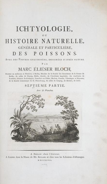 in 1785