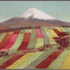 Mount Fuji with cultivated fields in foreground.