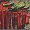 Avenue of wooden torii, Fushimi Shrine, Kyoto.