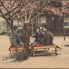 Picnic-style tea ceremony (nodate).