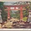 The Ichinotrii of Nara.