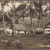 Native huts, Rarotonga.