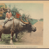 Riding on a water buffalo, P.I.