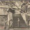 Sacred Bo tree, Anuradhapura, Ceylon.
