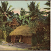 Native dwelling house.  Ceylon.