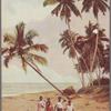 The side of the Silver Sea, Ceylon.