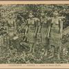 Cochinchine -- Bienhoa -- Groupe de femmes Cho-Ma.