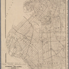 Sectional map of New York, Brooklyn and Coney Island souvenir.