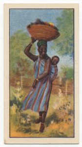 Carrying fruit.